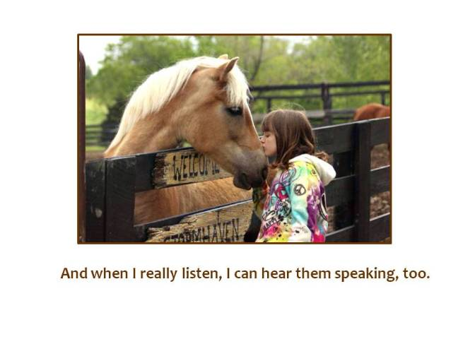 HORSES PG 6